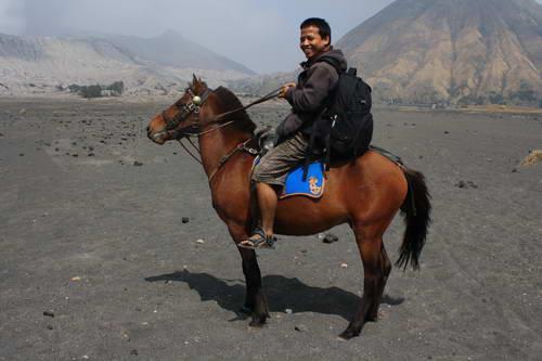 Naik Kuda di Bromo
