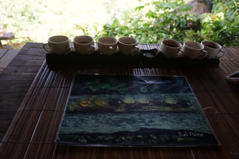Bali Pulina Lagi